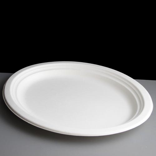 Oval Plastic Plate – White